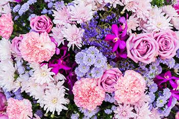 סדנת פרחים לנשים ונערות